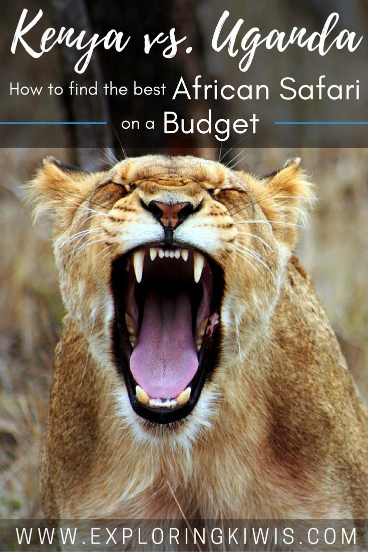 Hunting out the Best East African Safari - Uganda or Kenya?