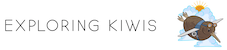 Exploring Kiwis